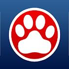 South Glens Falls CSD icon