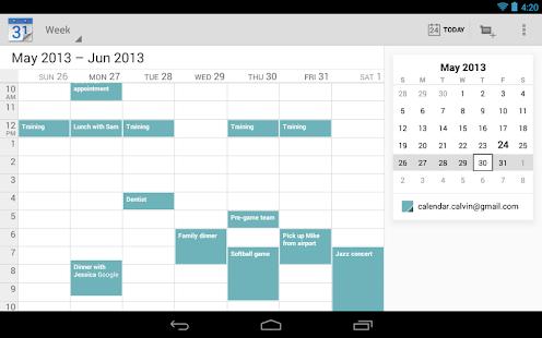 Google Calendar Screenshot 16