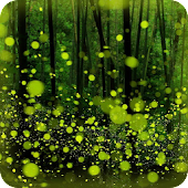 Forest Firefly live wallpaper