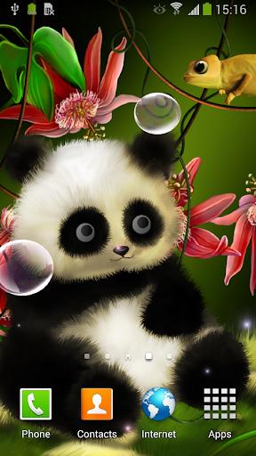 Animated Panda Live Wallpaper