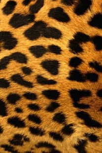 Leopard Print Live Wallpaper - screenshot thumbnail
