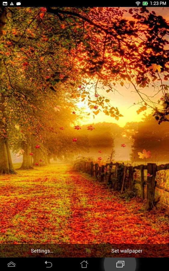 falling leaves live wallpaper android apps on google play
