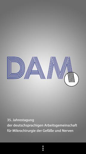 DAM2013