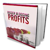 Bigger Blogging Profits Guide