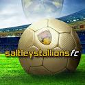 Saltley Stallions FC icon