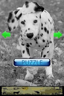 Dog Puzzle: Dalmatian- screenshot thumbnail