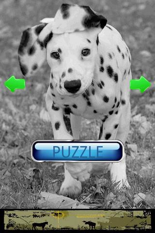 Dog Puzzle: Dalmatian - screenshot