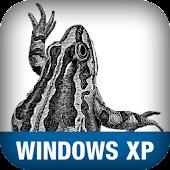 Windows XP Pocket Ref