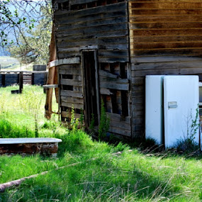 Tub and Fridge by Nikki Kean - Buildings & Architecture Decaying & Abandoned ( cabin, color, fridge, green, bathtub, brown, abandoned )