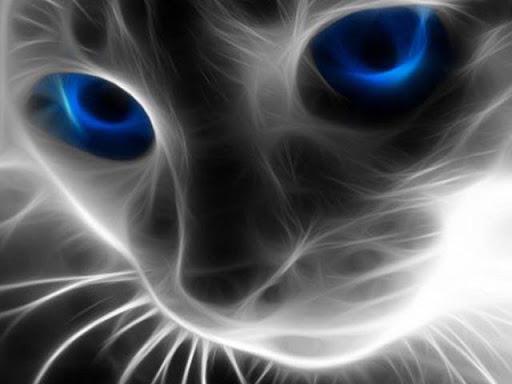 Digital Cat Wallpapers