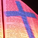 Exodus Bible Study Quiz KJV logo