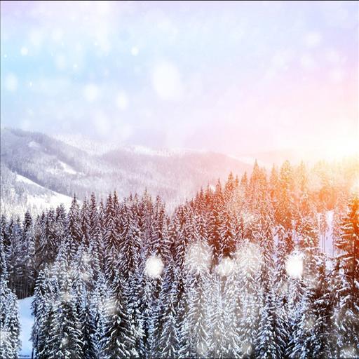 Snowfall LiveWallpaper