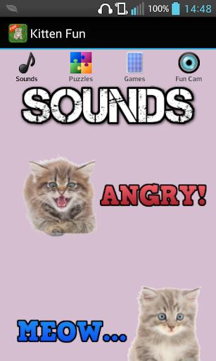 Kitten Games for Girls