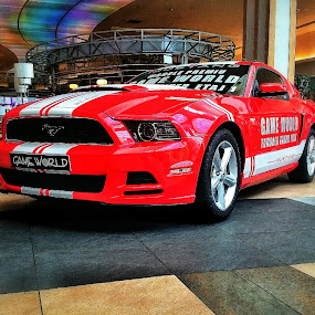 Ford Mustang by Daniel Budau - Transportation Automobiles ( mustang, polus, ford mustang, ford )