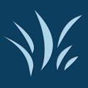 Buddy Apps - Logo
