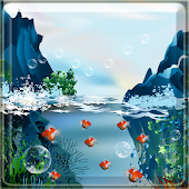 Real Koi Free Live Wallpape