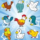 Birds giochi memoria e bambini icon