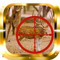Whitetail Buck Hunter icon