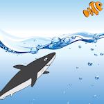 Tap Shark