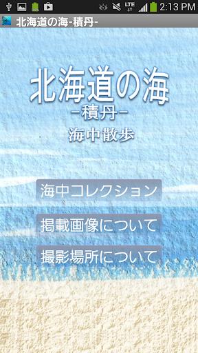 北海道の海~積丹~海中散歩