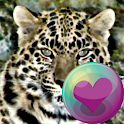 Leopard Series Live Wallpapers icon