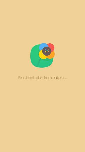 Nature World Hola Theme