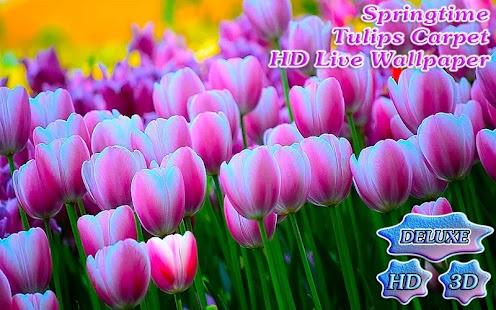 Springtime Tulips Carpet Bloom - náhled