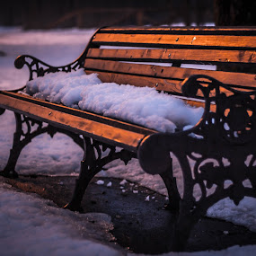 Fresh snow by Adrian Ioan Ciulea - City,  Street & Park  Night ( winter, park, bench, snow, night, light,  )