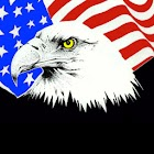 US Governors Flag Bird Flowers icon