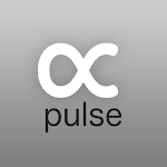 Carsten Nicolai: alpha pulse