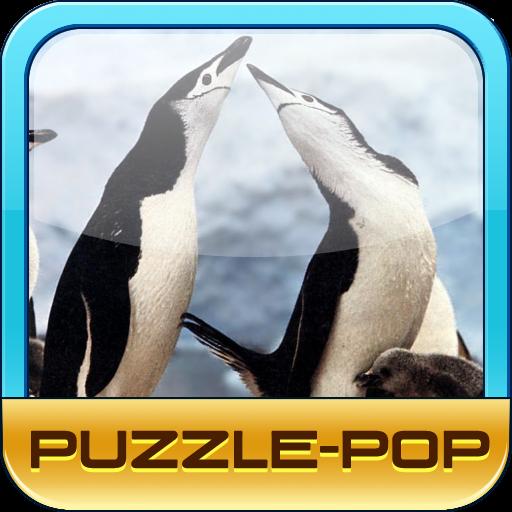 PuzzlePop Penguins
