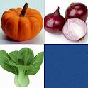 宝宝趣味识图对对碰与记忆训练-蔬菜篇 icon