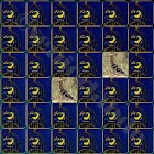 Memory Game Songbirds icon