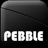 PEBBLE BLE TAG