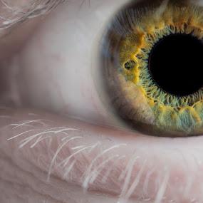 eye by Alexander Kulla - People Body Parts ( detail, near, makrofotografie, auge, makro, nah, people, eye,  )