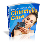ULTIMATE GUIDE TO CHINCHILLA