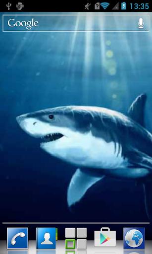 Scary shark LWP