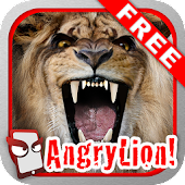 Angry Lion Free!