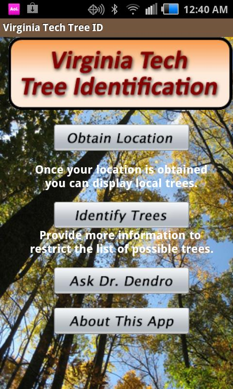 Image result for Virginia Tech Tree ID