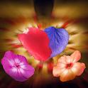 Falling Petals 3D Wallpaper