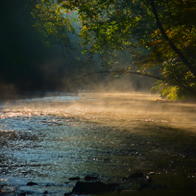 Mohican Sunrise by Chuck Hagan - Landscapes Waterscapes ( stream, clearfork river, fog, mohican, sunrise, rivers,  )