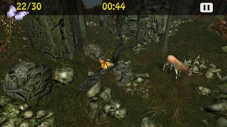 Butterflies Catch Craze 3D 1.0 screenshot 6206