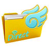 FlyingFile-Direct