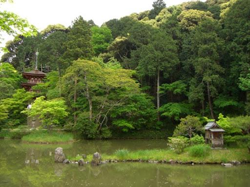 浄瑠璃寺庭園