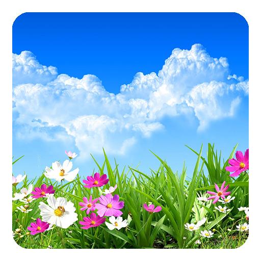 フラワー春季ライブ壁紙 個人化 App LOGO-硬是要APP