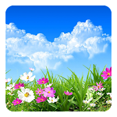 Flower Spring Live Wallpaper