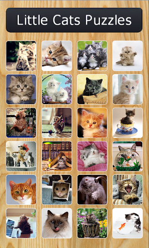 Little Cats Puzzles
