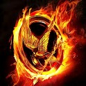 The Hunger Games Wallpaper icon