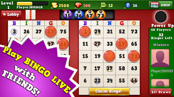 Screenshot of Bingo Vegas 2