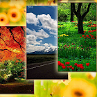 Nature Wallpapers 1 icon